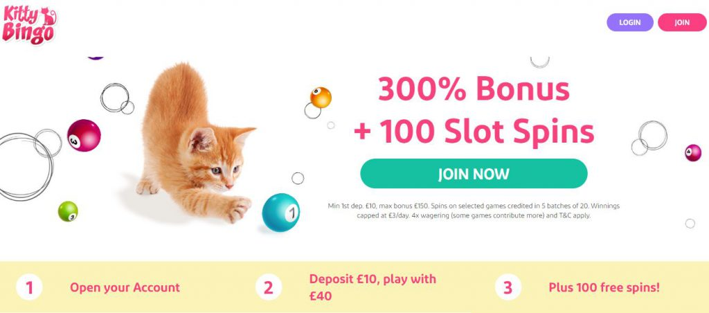 Kitty Bingo Log In